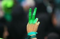 Iranian voter green fingers
