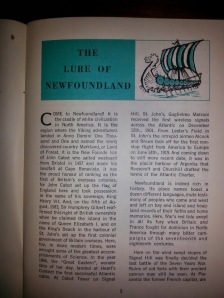 Lure of Newfoundland